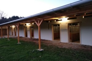 Ecurie Châtillon box avec terrasse