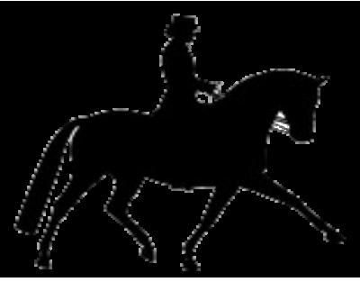 Angebot Pferdeausbildung